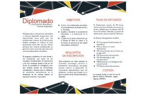 BrochureDiplomado1